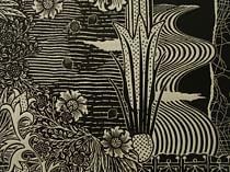 Jenny Kitchener :: Seed